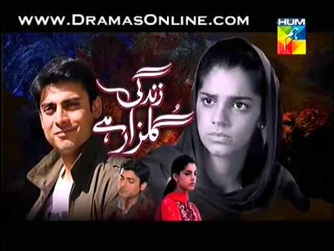 Watch Zindagi Gulzar Hai Episode 19 HUM TV
